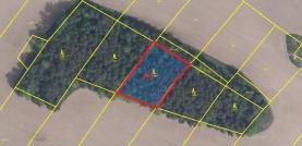 Prodej, les, 11 628 m2, Černíč