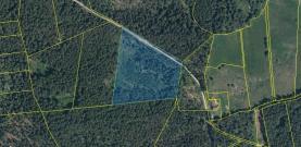 Prodej, lesní pozemek, 20917 m2, Stachy
