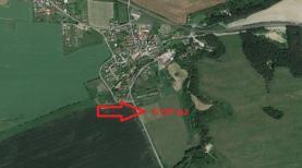 Prodej, pole, 8929 m2, Plešnice