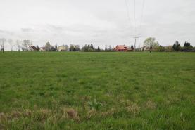 Prodej, pozemek, 9525 m2, Nebory