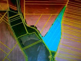 Prodej, les,14113 m2, Ivanovice na Hané