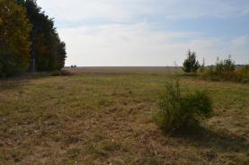DSC_1397 (Prodej, stavební pozemek, 1311 m2, Pchery), foto 2/10