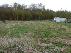 Prodej, pozemek, 3944m2, Skalná, Vonšov