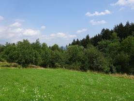 Prodej, zahrada, 1437 m2, Vidče