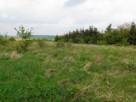 DSCN4234 (Prodej, stavební pozemek, 1035 m2, Malíkovice - Hvězda), foto 4/10
