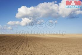 Prodej, pole, 45408 m2, Spálov