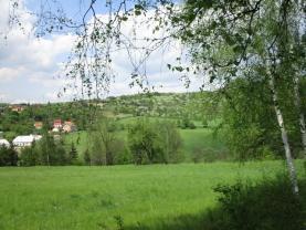 okolní pohled  (Prodej, pozemek, 2279 m2, Bžany - Lysec), foto 2/8
