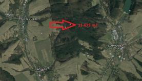 Prodej, lesní pozemek, 11675 m2, Ludkovice