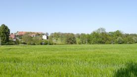 P1010267 (1) (Prodej, pozemek vhodný k výstavbě, 1745 m2, Úmonín), foto 2/7