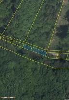 Prodej, les, 13154 m2, Vranová Lhota
