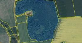 Prodej, lesní pozemek, 71 100 m2, okres Domažlice