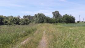 pohled na pozemek (Prodej, stavební pozemek, 9140 m2, Česká Lípa - D. Libchava), foto 2/4