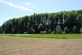 DSC_0893 (Prodej, pozemek, 4152 m2, Karviná - Louky), foto 3/3