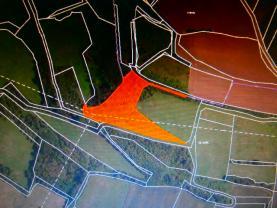 Prodej, les, 11344 m2, Teplice-Bystřany