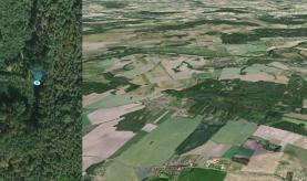 Prodej, les, 2701 m2, Sulovice