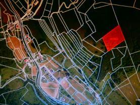 Prodej, les, 6816 m2, Halenkov