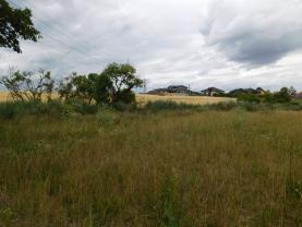 DSCN4550 (Prodej, orná půda, 5359 m2, Hřebeč), foto 2/4