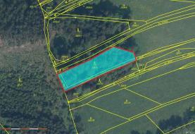 Prodej, les, 1706m2, Klenčí pod Čerchovem