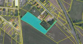Plánek pozemku (Prodej, pozemek, 7758 m2, Dušníky), foto 2/15