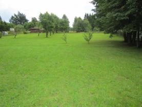 Prodej, trvalý travní porost, 1282 m2, Hranice u Aše