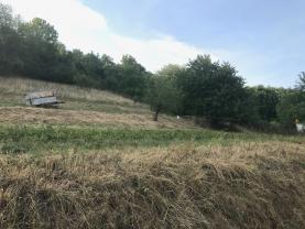 IMG_3550 (Prodej, pole, 2000 m2, Veselíčko), foto 2/5