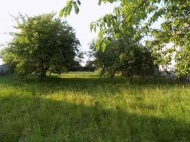 DSCN1680 (Prodej, pozemek 939 m2, Pňovice u Příbrami), foto 3/10