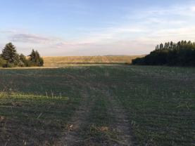 IMG_5941 (Prodej, pozemek, 9780 m2, Unhošť), foto 3/7