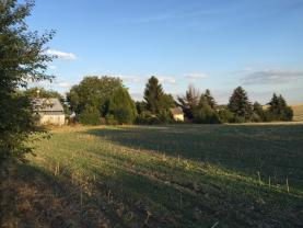 IMG_5942 (Prodej, pozemek, 9780 m2, Unhošť), foto 2/7