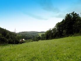 Prodej, pozemek, 3.796 m2, Holčovice - Dlouhá Ves