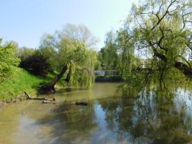 DSCN3571 (Prodej, chalupa a rybník, Olomouc), foto 2/3