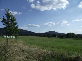 Prodej, pozemek, Loukov