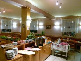hotel foto 158 (Prodej, hotel, Mariánské Lázně, Hamrníky), foto 3/10