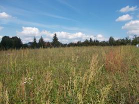 Prodej, pozemek, 2827 m2, Petřvald
