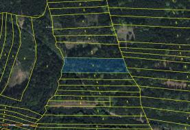 Prodej, lesní pozemek, 7764 m2, Bratřice