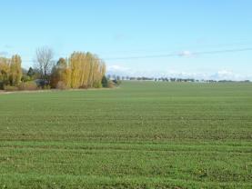 P1230753 (Prodej, pozemek, 3834 m2, Hřebeč), foto 3/3