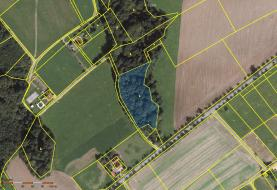 Prodej, lesní pozemek, 6368 m2, Horní Bludovice