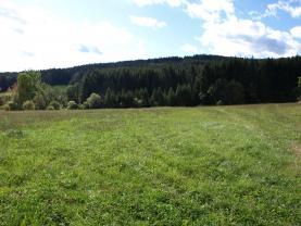 Prodej, stavební pozemek, 9144 m2, Stachy - Úbislav