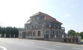 Prodej, rodinný dům, Borek