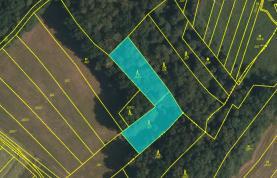 Prodej, lesní pozemek, Blazice