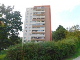 Prodej, byt 1+kk, 30 m2, OV, Brno Žabovřesky