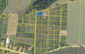 orto (Prodej, stavební pozemek, 822 m2, Lešany, Břežany), foto 3/21