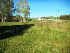 DSCN7748 (Prodej, pozemek, 3600 m2, Mochtín-Kocourov), foto 3/18