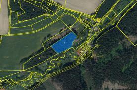 Prodej, les 3600 m2, Křešín