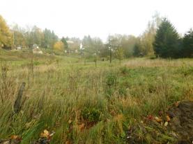 DSCN5241 (Prodej, pozemek, 2534 m2, Krchleby), foto 3/3