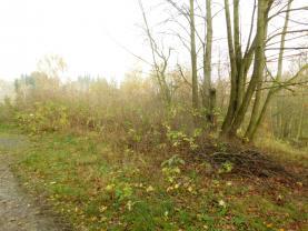 DSCN5248 (Prodej, pozemky, 850 m2, Krchleby), foto 2/3