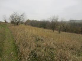 IMG_0195 (Prodej, orná půda, 12124 m2, Bakov), foto 4/7