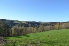 pozemek (Prodej pozemky, 12712 m2, Vysoké nad Jizerou, obec Helkovice), foto 2/8
