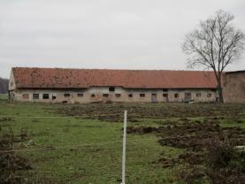 Pronájem, zemědělský objekt, Plaňany - Blinka