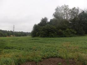 Prodej, pozemek, 2000 m2, Paskov