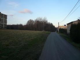 (Prodej, pozemek, 11887 m2, Rychvald), foto 3/8